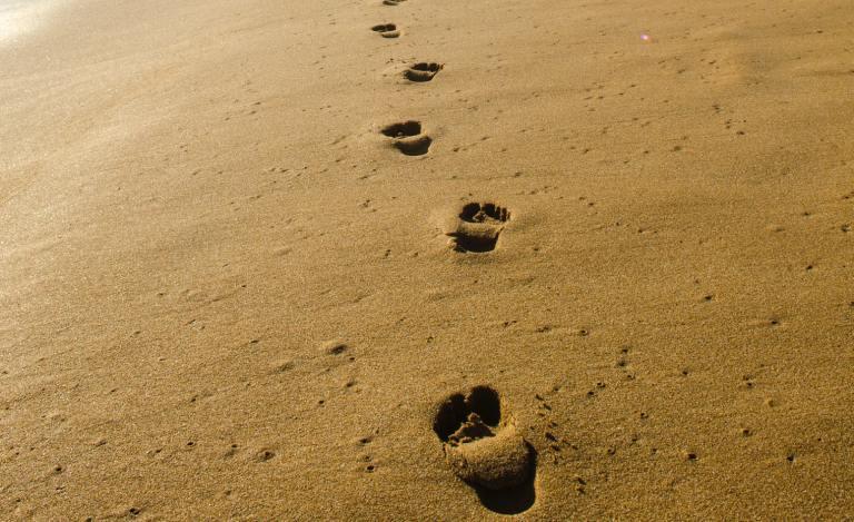 E a vida vai andando