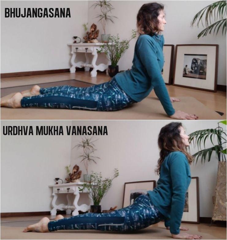 Erros mais comuns - Urdhva Mukha Svanasana e Bhujangasana